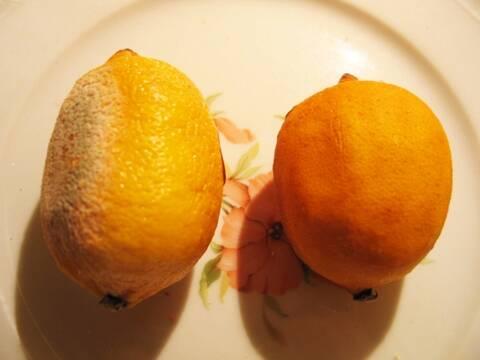 test du citron magnétisé pour savoir si on a un don pour le magnétisme